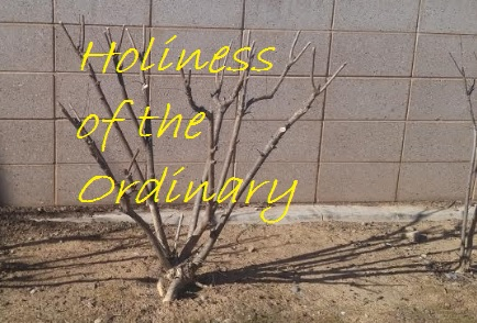 Holiness of the ordinary