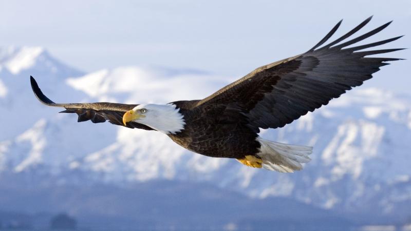 image from www.beliefnet.com