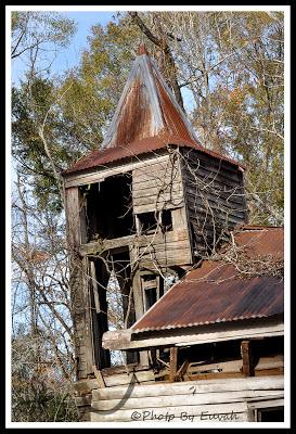 image from cajunsis.blogspot.com