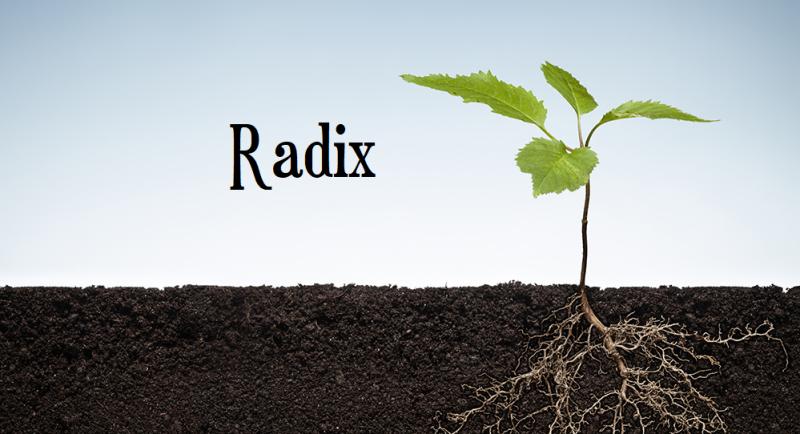 Radix2