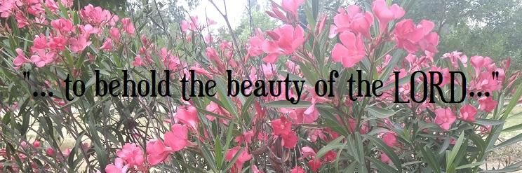 Beholding Beauty