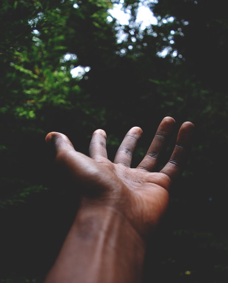 Hand rui-silvestre-703796-unsplash