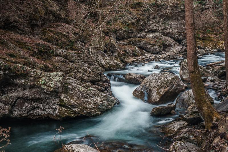 Stream - jeffrey-wegrzyn-_1xDavj2H78-unsplash