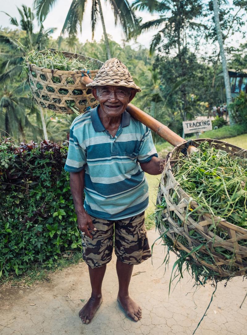 Gardener luiz-guimaraes-1278254-unsplash
