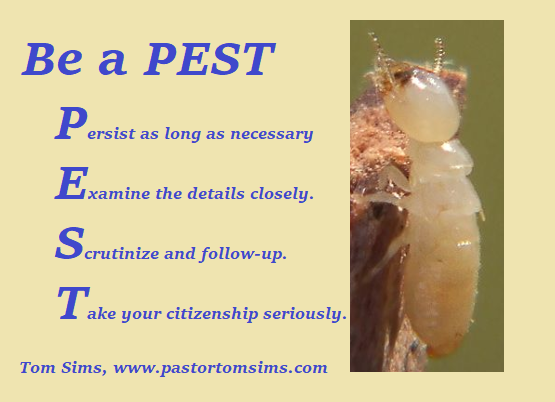Be a pest