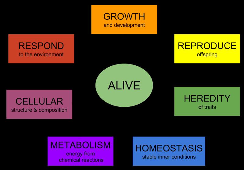 Characteristics_of_life.svg