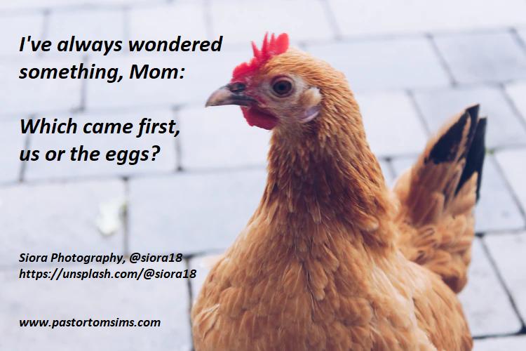 Chicken or egg